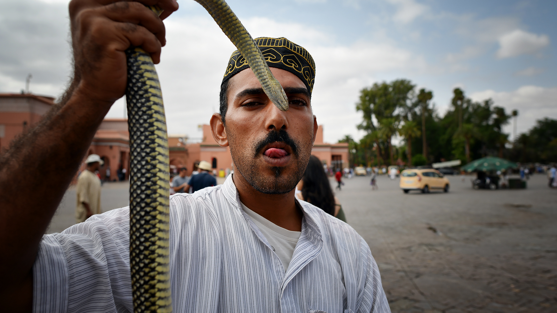 Snake charmer of Marrakech